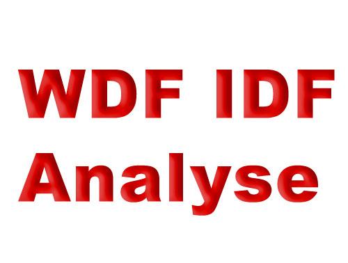 WDF*IDF Schriftzug